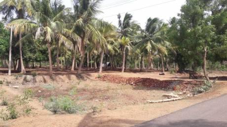 1300 sqft, Plot in Builder Neru Nagar pateeswaram to Kumbakonam road, Thanjavur at Rs. 13.0000 Lacs