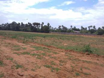 1503 sqft, Plot in Builder Project Pendurthi, Visakhapatnam at Rs. 14.1950 Lacs
