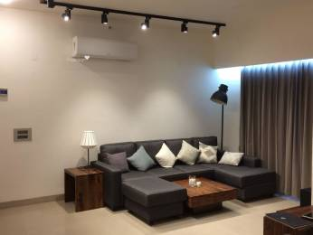 1450 sqft, 3 bhk Apartment in Builder Project SRS Residency, Faridabad at Rs. 22500