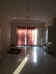 1700 sqft, 3 bhk Apartment in Builder Project Hitex, Hyderabad at Rs. 40000