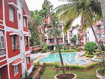 742 sqft, 1 bhk Apartment in Builder Apartment in Candolim Candolim, Goa at Rs. 34.5000 Lacs