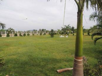 1503 sqft, Plot in Chilukuri Brundavan Estates Kapuluppada, Visakhapatnam at Rs. 33.4000 Lacs