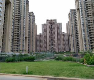 760 sqft, 1 bhk Apartment in Bhartiya Nikoo Homes Kannur on Thanisandra Main Road, Bangalore at Rs. 50.0000 Lacs