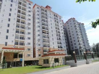 1856 sqft, 3 bhk Apartment in RNS Shanthi Nivas Yeshwantpur, Bangalore at Rs. 1.5600 Cr