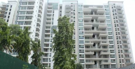 1910 sqft, 3 bhk Apartment in Brigade Cosmopolis Whitefield Hope Farm Junction, Bangalore at Rs. 52000