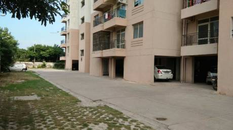 1200 sqft, 2 bhk Apartment in  Redwood Residency Sector 78, Faridabad at Rs. 25.5000 Lacs