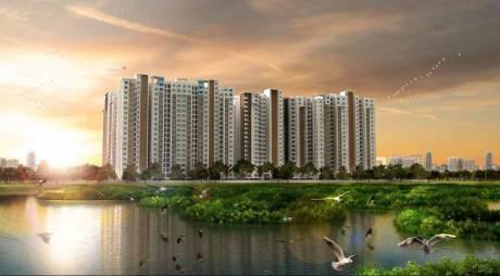 1024 sqft, 2 bhk Apartment in Doshi Risington Karapakkam, Chennai at Rs. 65.0000 Lacs