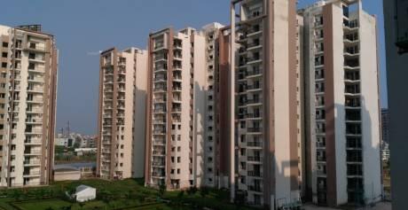 1910 sqft, 3 bhk Apartment in Builder motiaz royal citi Ambala Highway, Zirakpur at Rs. 65.8000 Lacs