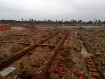 720 sqft, Plot in Builder Royale Garden Premium Patiala Highway, Zirakpur at Rs. 12.7950 Lacs