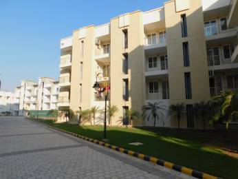 1156 sqft, 2 bhk Apartment in APS Highland Park Bhabat, Zirakpur at Rs. 35.9000 Lacs