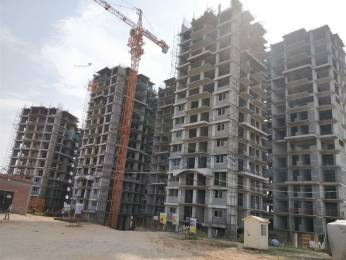 1270 sqft, 2 bhk Apartment in Ambika Florence Park Mullanpur, Mohali at Rs. 48.0000 Lacs