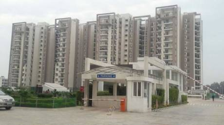 1460 sqft, 3 bhk Apartment in Motia Royal Citi Apartments Gazipur, Zirakpur at Rs. 58.4000 Lacs