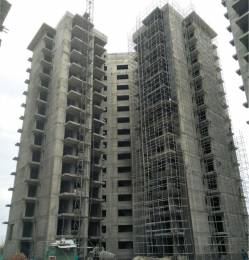 1095 sqft, 2 bhk Apartment in Hero Hero Homes Sector 88 Mohali, Mohali at Rs. 52.4000 Lacs