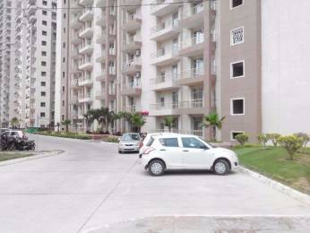 450 sqft, 1 bhk Apartment in Builder Supertech Czar Suits Pari Chowk, Greater Noida at Rs. 11000