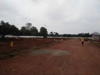 1863 sqft, Plot in Builder Nandanavanam visishita Revidi Road, Visakhapatnam at Rs. 17.5950 Lacs