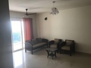 1799 sqft, 3 bhk Apartment in Builder olive Kalista Arista Kakkanad, Kochi at Rs. 27000