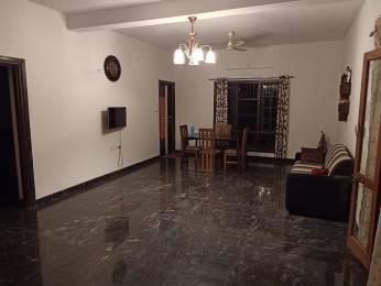 750 sqft, 1 bhk Apartment in Builder Project Attavar, Mangalore at Rs. 14000