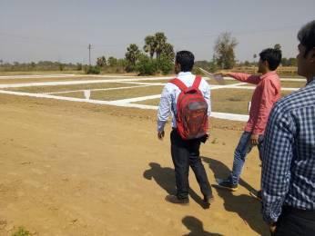 1250 sqft, Plot in Builder Project Tower Road, Gandhinagar at Rs. 85.0000 Lacs