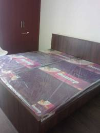 500 sqft, 1 bhk Apartment in Urbtech Xaviers Sector 168, Noida at Rs. 9600