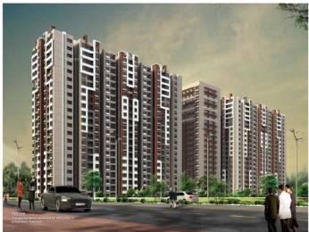 990 sqft, 2 bhk Apartment in Patel Smondo Gachibowli, Hyderabad at Rs. 72.8000 Lacs