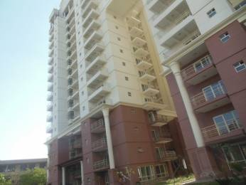 2008 sqft, 3 bhk Apartment in SPR Imperial Estate Sector 82, Faridabad at Rs. 85.0000 Lacs