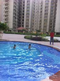 850 sqft, 2 bhk Apartment in Uppal Jade Sector 86, Faridabad at Rs. 35.0000 Lacs