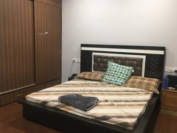 1200 sqft, 2 bhk IndependentHouse in Builder Project Brs nagar, Ludhiana at Rs. 13000