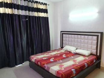 2700 sqft, 4 bhk IndependentHouse in Builder Project Agar nagar, Ludhiana at Rs. 40000