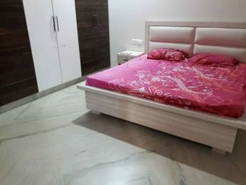 1850 sqft, 3 bhk Apartment in Builder Project Brs nagar, Ludhiana at Rs. 18000