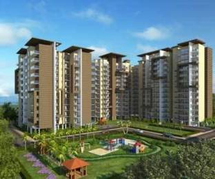 1250 sqft, 3 bhk Apartment in CGHS Gail Society Sector 56, Gurgaon at Rs. 95.0000 Lacs