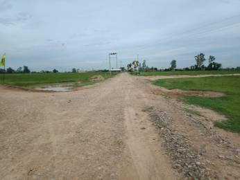 1125 sqft, Plot in Builder Signature City Landran Road Landran Road, Mohali at Rs. 18.8750 Lacs