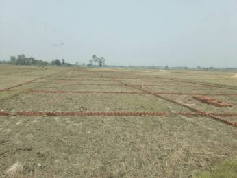 1000 sqft, Plot in Builder zaire sparkle valley Gauhania Road, Allahabad at Rs. 4.0100 Lacs