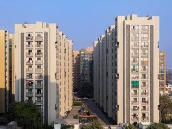 1560 sqft, 3 bhk Apartment in Builder 3 BHK Furnished Apartment South Bopal, Ahmedabad at Rs. 25000