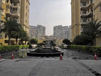 2290 sqft, 3 bhk Apartment in Supertech Emerald Court Sector 93A, Noida at Rs. 1.2595 Cr