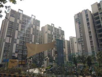 1875 sqft, 3 bhk Apartment in Pacifica Green Acres Prahlad Nagar, Ahmedabad at Rs. 1.1000 Cr