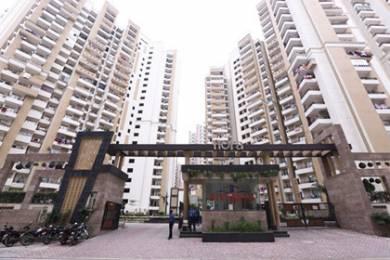 1475 sqft, 3 bhk Apartment in Builder Divyansh Flora Sector 16C Noida Extension Noida Extn, Noida at Rs. 53.0000 Lacs