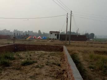 324 sqft, Plot in Builder Project Sohnaa, Gurgaon at Rs. 3.9600 Lacs
