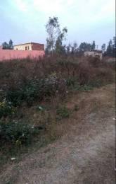 1746 sqft, Plot in Builder Project Ajitpur, Rampur at Rs. 32.0000 Lacs