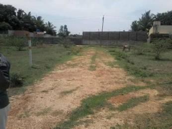 2000 sqft, Plot in Builder Beed By Pass Road Satara Highcort Colony Satara, Aurangabad at Rs. 20.0000 Lacs