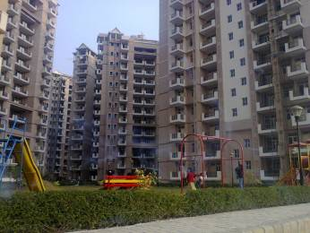 1450 sqft, 3 bhk Apartment in SRS Royal Hills Sector 87, Faridabad at Rs. 45.0000 Lacs