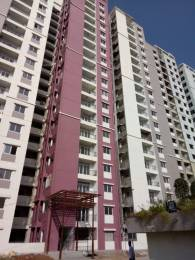 1179 sqft, 2 bhk Apartment in Prajay Megapolis Kukatpally, Hyderabad at Rs. 24500