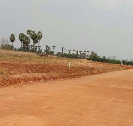 1503 sqft, Plot in Builder Nandanavanam Subhapradha Vizianagaram Tagarapuvalasa Road, Visakhapatnam at Rs. 20.8750 Lacs