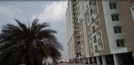 6400 sqft, 5 bhk Apartment in Builder Pent Houses At Alliance Orchid Springs Korattur Chennai Korattur, Chennai at Rs. 7.0000 Cr