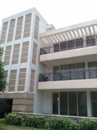 4500 sqft, 4 bhk BuilderFloor in Puri VIP Floors Sector 81, Faridabad at Rs. 1.1600 Cr