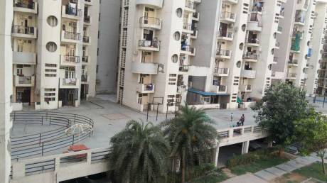 1200 sqft, 2 bhk Apartment in Omaxe Heights Sector 86, Faridabad at Rs. 46.0000 Lacs