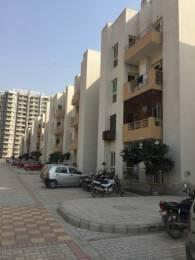 918 sqft, 2 bhk BuilderFloor in KLJ Platinum Floors Sector 77, Faridabad at Rs. 28.0000 Lacs
