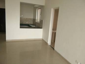 1400 sqft, 3 bhk Apartment in Puri Pratham Sector 84, Faridabad at Rs. 57.0000 Lacs