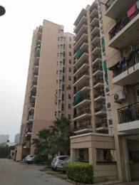 1153 sqft, 2 bhk Apartment in Omaxe New Heights Sector 78, Faridabad at Rs. 40.0000 Lacs