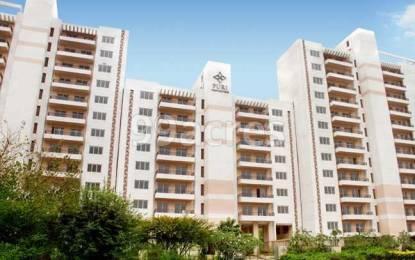 1100 sqft, 2 bhk Apartment in Puri Pratham Sector 84, Faridabad at Rs. 11500