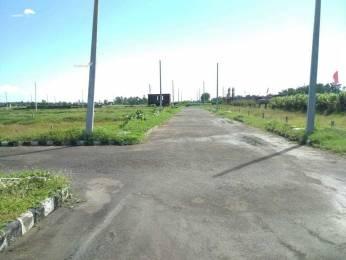 657 sqft, Plot in Builder Rose Avenue Dera Bassi Chandiala Road, Dera Bassi at Rs. 6.5700 Lacs